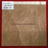 Плитка пола мрамора тела промотирования Foshan роскошная каменная полная
