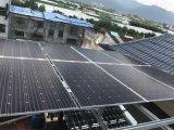 Célula solar y el panel de la panda de la buena calidad 50W-300W