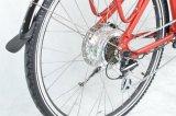 Stadt-elektrisches Fahrrad des neuen Modell-2018 (FR-TDB04Z)