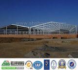 يجعل في الصين يصنع [ستيل ستروكتثر] منزل ورشة مستودع