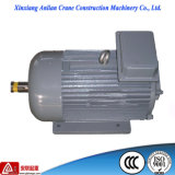 Y2 Motor eléctrico de inducción trifásico serie 1CV