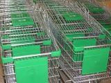 Einkaufen-Laufkatze-Karren-Bildschirmanzeige, die Vorstand bekanntmacht