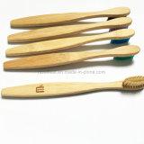 抗菌性のタケ歯ブラシは歯ブラシをからかう