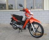 50cc/110cc tipo Moto/motocicleta (SL110-4A) de Cub Honda del modelo nuevo