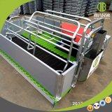 Jaulas de parto galvanizadas equipo de la avicultura de la alta calidad para la venta