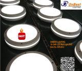 Luz al aire libre de la pared del tabique hermético 18W LED de las ventas calientes en IP65