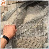 Rete fissa della maglia della corda del reticolato dell'uccello dell'uccelliera dell'acciaio inossidabile