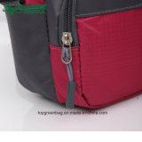 Ultimi sacchetti di spalla del sacchetto del messaggero degli studenti di college delle signore di modo