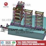 De grote Kooi van de Laag van de Capaciteit van de Kip Automatische van de Zilveren Ster van China