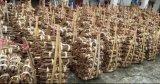 Venta caliente cultivos frescos pelados de calidad Premium Canela roto