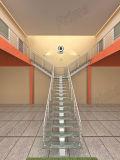 Primaの柵デザインの屋外の使用された金属階段まっすぐなステアケース