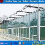 Chambre verte en verre hydroponique commerciale de Multispan pour la framboise