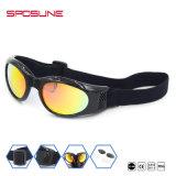 Ajustable attache les lunettes tactiques d'Airsoft en verre de lunettes de soleil de lentilles militaires d'Interchangable