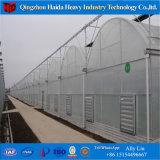 Hydroponic 시스템을%s 가진 모터 유리제 온실을 위로 구르십시오