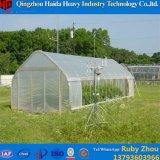 Niedrige Kosten-Licht-Entzug-Dach lüftet Gewächshaus für Gemüse