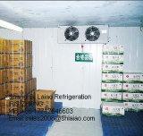 工場製造の冷蔵室および記憶