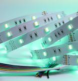 Fabbrica nuovo Rgbcct rosso/verde/blu/bianco/colore rosa/colore viola che cambia le strisce del LED