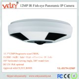 La vigilancia Hikvision resistente al agua de red de seguridad CCTV Cámara Fisheye IP Digital