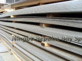 Plaques d'acier inoxydable pour le matériel chimique (310S)