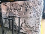 Mattonelle di marmo viola della Cina Calacatta per il pavimento, il controsoffitto e la parete