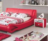 غرفة نوم أثاث لازم سرير حديثة [أ855]