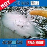 海水のスラリーの製氷機械を急速冷凍しなさい