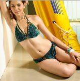 Bikini (YB-SW10013)