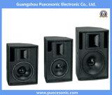 Bidirektionales Systems-Berufslautsprecher-System des Lautsprecher-F-15