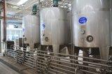 コップの詰物が付いている明白なヨーグルトの発酵システム