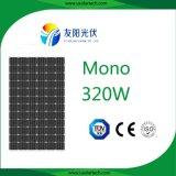 panneau solaire employé couramment de vente de l'usine 320W