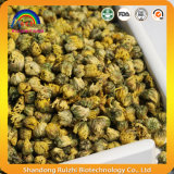 乾燥された黄色い菊の芽の花の茶飲み物