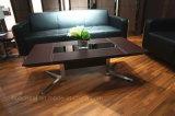 스테인리스 다리 (CA02)를 가진 새로운 현대 작풍 탁자