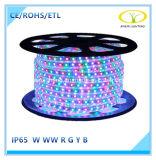 Lumière de bande flexible approuvée de RoHS DEL de la CE avec le prix usine