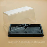 透過正方形のケーキのまめボックス