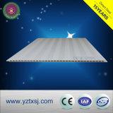 Panneau léger de mur de la qualité WPC de perle