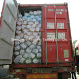 Container Loading Supervision / Container Loading Check / Container Loading Service