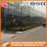 Estufas de vidro da agricultura para o vegetal/flor/jardim