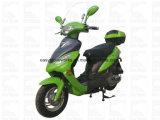 Curso elét. do disco EPA do CDI da motocicleta de Zhenhua Pmz50-4 50cc