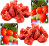 baie organique de 180grains/50g Goji, baie organique de l'USDA Certificed Goji