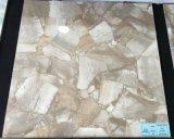Voll polierte glasig-glänzende Porzellan-Fußboden-Keramikziegel (VRP6D056, 600X600mm)