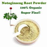 Triterpenos de Notoginseng del extracto de Panax Notoginseng para el alimento y los cosméticos