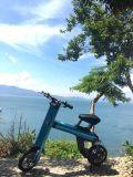 La bicicleta eléctrica plegable Bike la garantía del fabricante de 1 año incluida