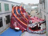 Trasparenza gonfiabile del più grande dinosauro da vendere (CV-A071)