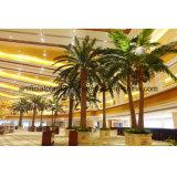 Qualitäts-künstliche Dattel-Palme-Fälschungs-Kokosnuss-Palme