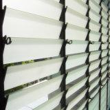 Опаковая кислота вытравила Sandblasted замороженные тени окна жалюзиего стеклянные