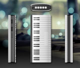 10000mAh Banco de potencia de la moda de tecla de piano