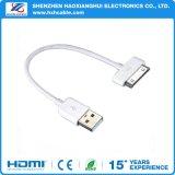 Низкая цена быстрая зарядка через USB-кабель производителя для iPhone/iPod