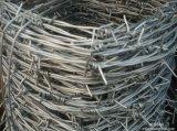 工場価格のステンレス鋼の有刺鉄線