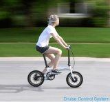 Bicicleta plegable eléctrica del neumático gordo de alta velocidad grande de la potencia
