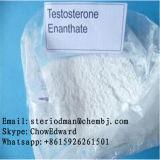 보디 빌딩을%s 고품질 스테로이드 호르몬 분말 테스토스테론 Enanthate
